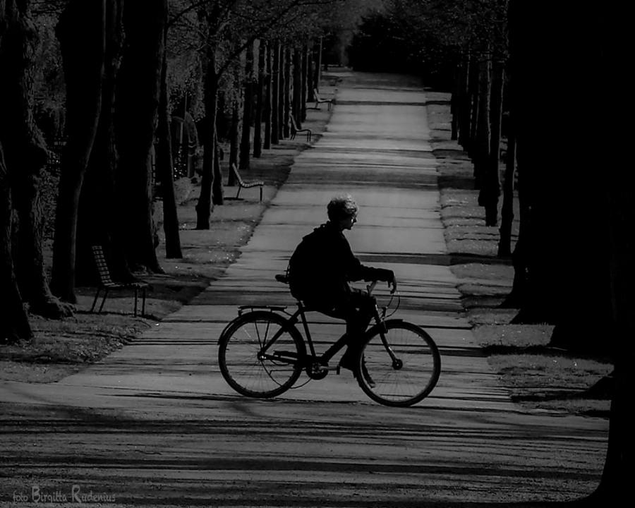 PiPP_20150506_biking