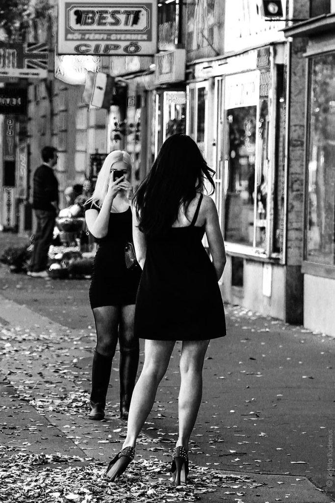 PiPP_20131023_ladyshoe1
