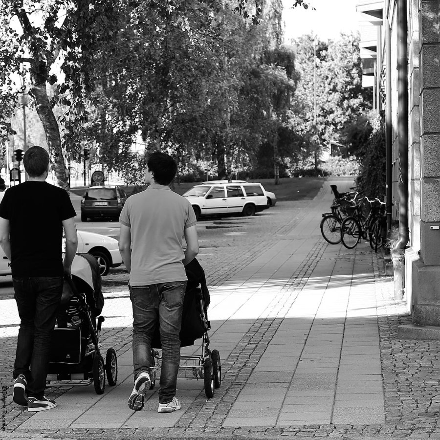 PiPP_20130913_dads